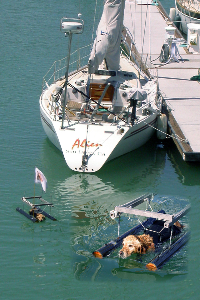 Venus was the only dog with her own boat at the Costa Baja Marina in 2007, La Paz, Baja California Sur.